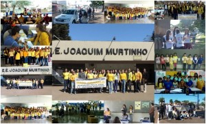 EE Joaquim Murtinho