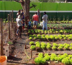 6 visita a horta familia na escola